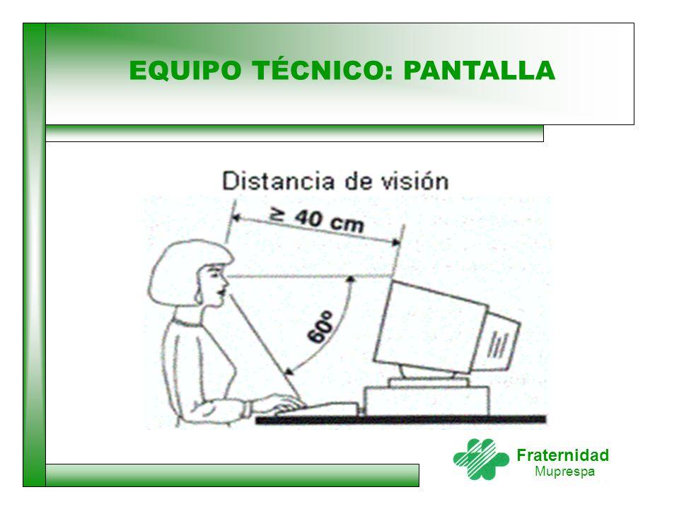 EQUIPO TÉCNICO: PANTALLA