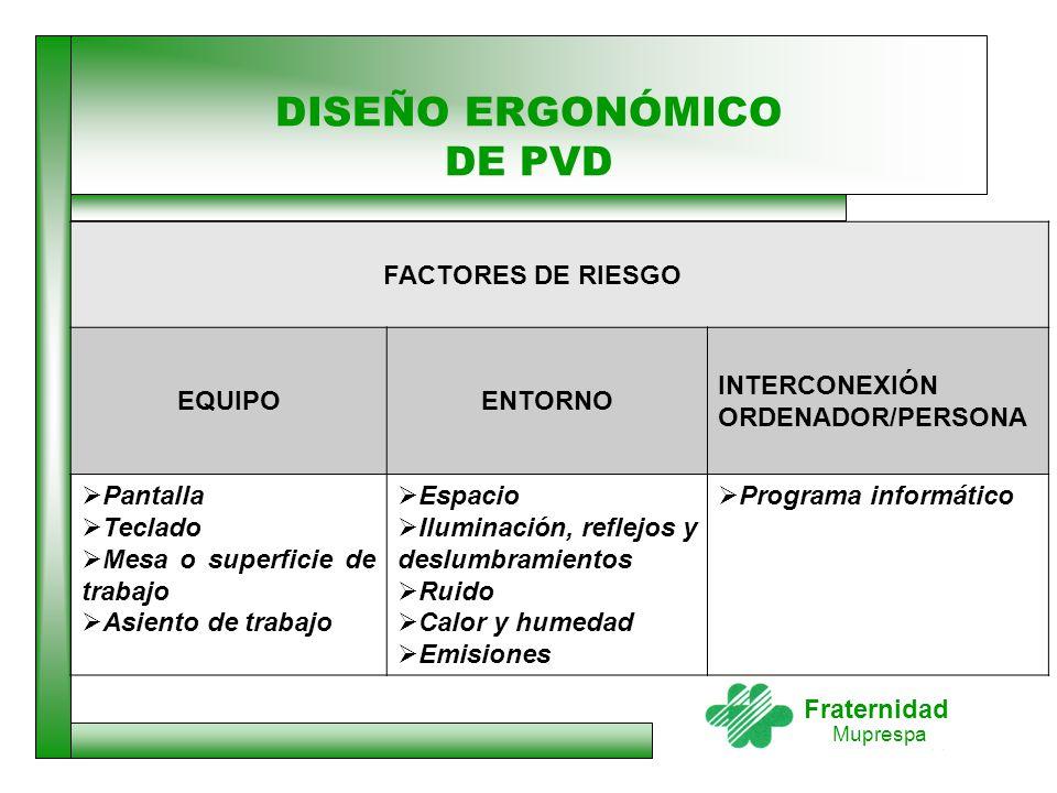 DISEÑO ERGONÓMICO DE PVD