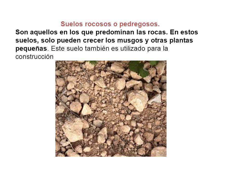 Tipos de suelos ppt video online descargar for Que es la clausula suelo de los bancos