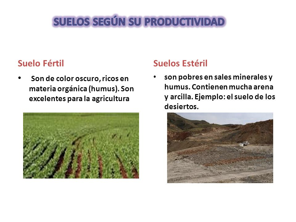 Tipos de suelos ppt video online descargar for Suelos y tipos de suelos