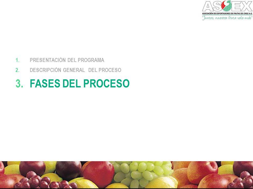 Fases del proceso Presentación del Programa