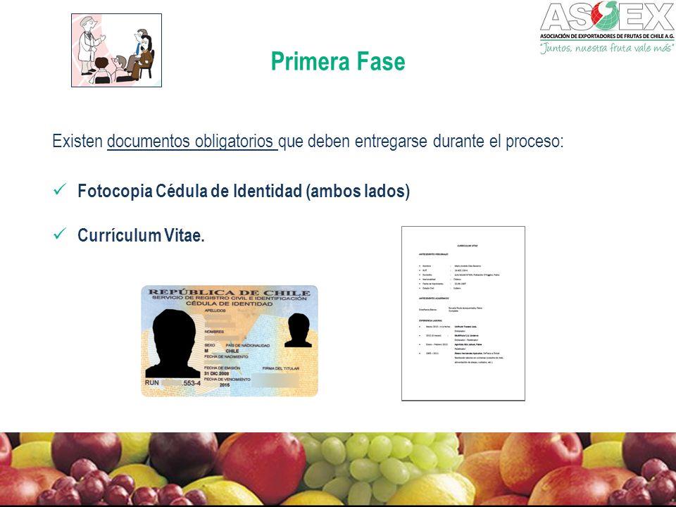 Primera Fase Existen documentos obligatorios que deben entregarse durante el proceso: Fotocopia Cédula de Identidad (ambos lados)