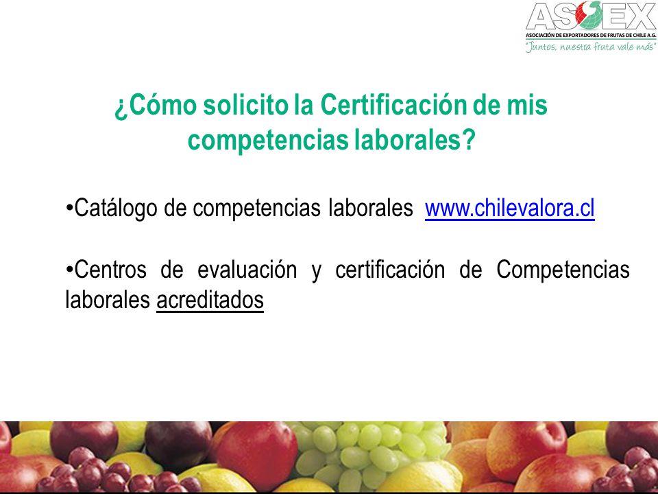 ¿Cómo solicito la Certificación de mis competencias laborales