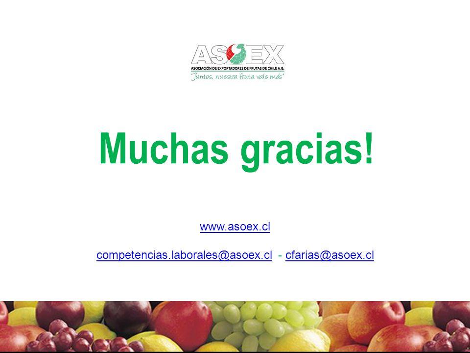 competencias.laborales@asoex.cl - cfarias@asoex.cl