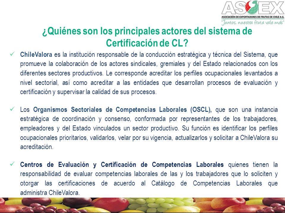 ¿Quiénes son los principales actores del sistema de Certificación de CL