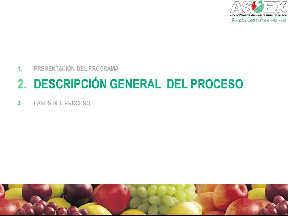 descripción general del Proceso
