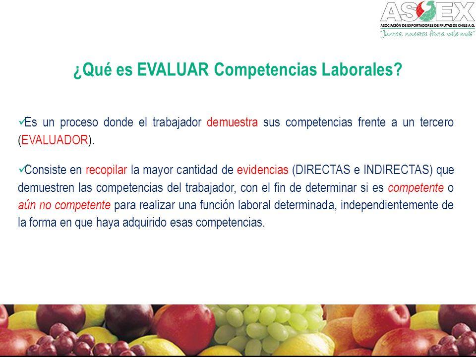 ¿Qué es EVALUAR Competencias Laborales