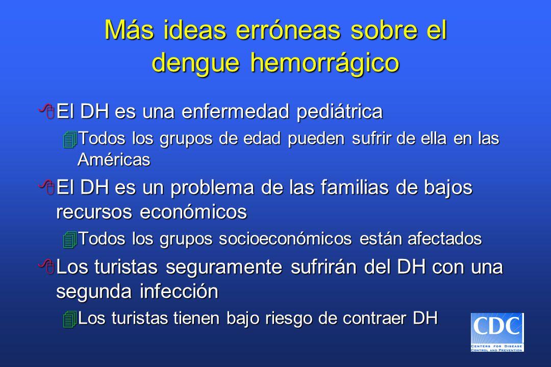 Más ideas erróneas sobre el dengue hemorrágico