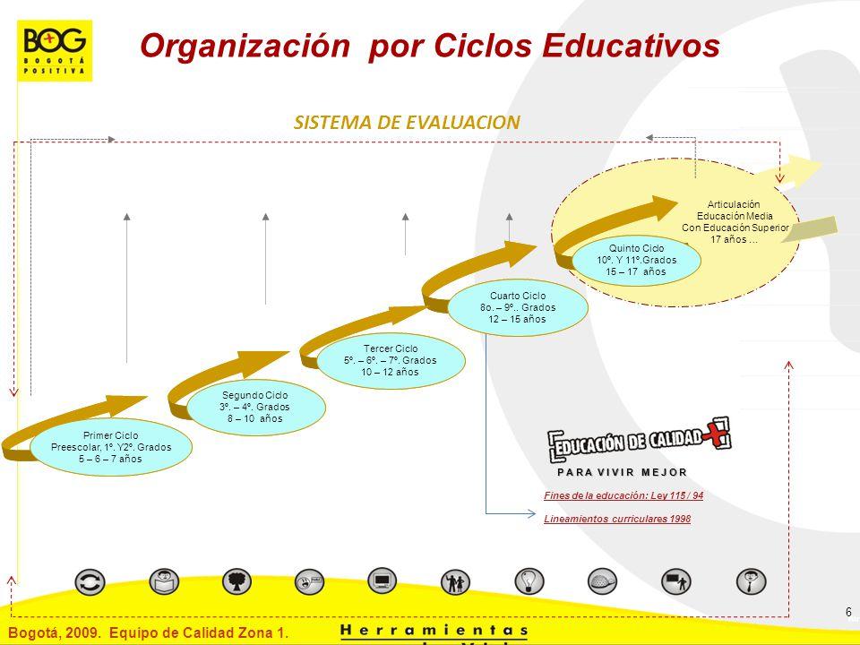 Organización por Ciclos Educativos