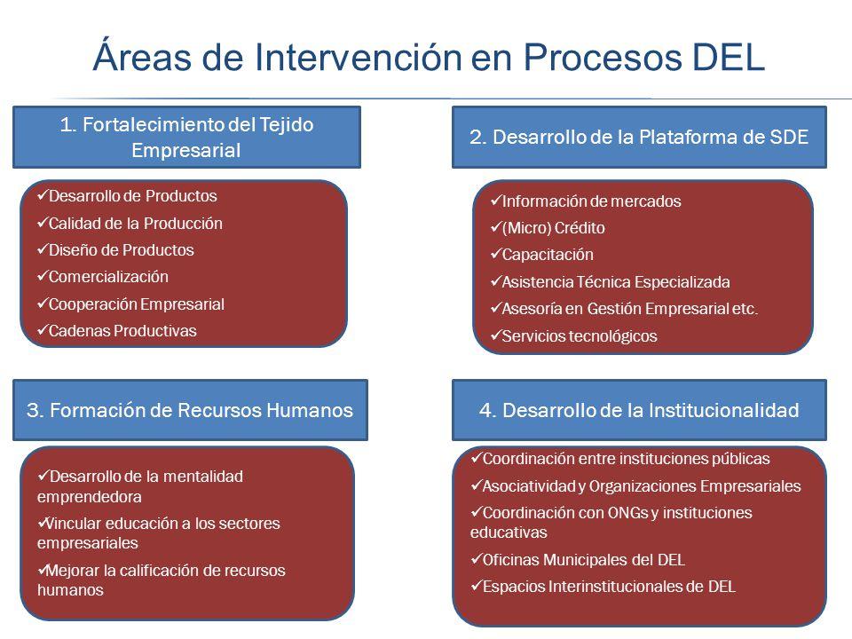 Áreas de Intervención en Procesos DEL