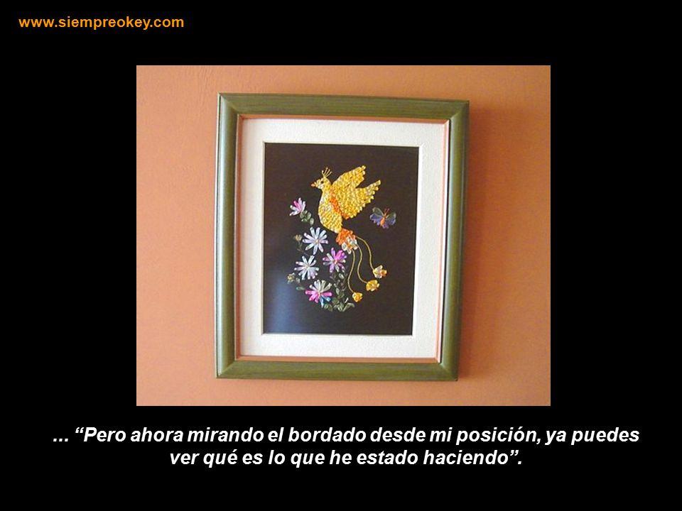 www.siempreokey.com ...