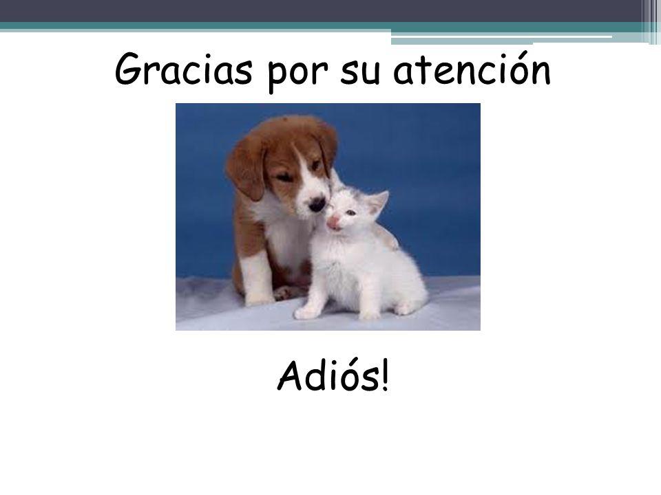 Gracias por su atención Adiós!
