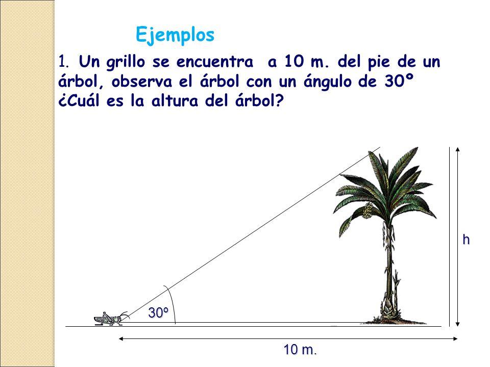 Ejemplos 1. Un grillo se encuentra a 10 m. del pie de un árbol, observa el árbol con un ángulo de 30º ¿Cuál es la altura del árbol