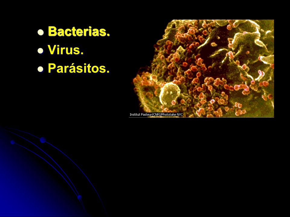 Bacterias. Virus. Parásitos.