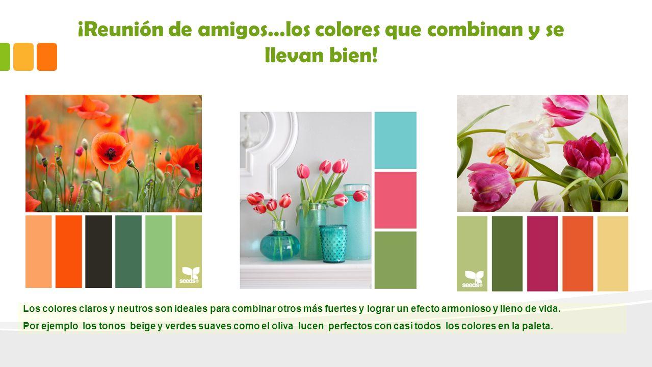 28 colores en tonalidades lima despiertan - Colores que combinan ...