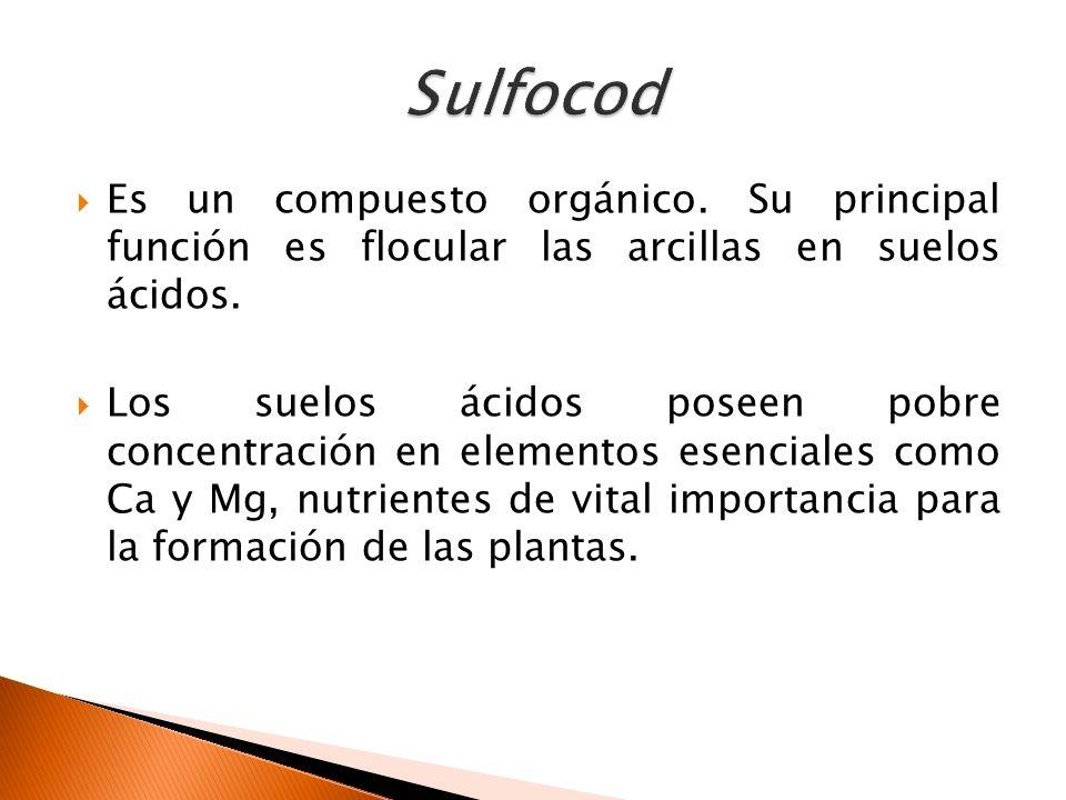 Importancia del manejo y conservaci n de suelos en los for Importancia de los suelos