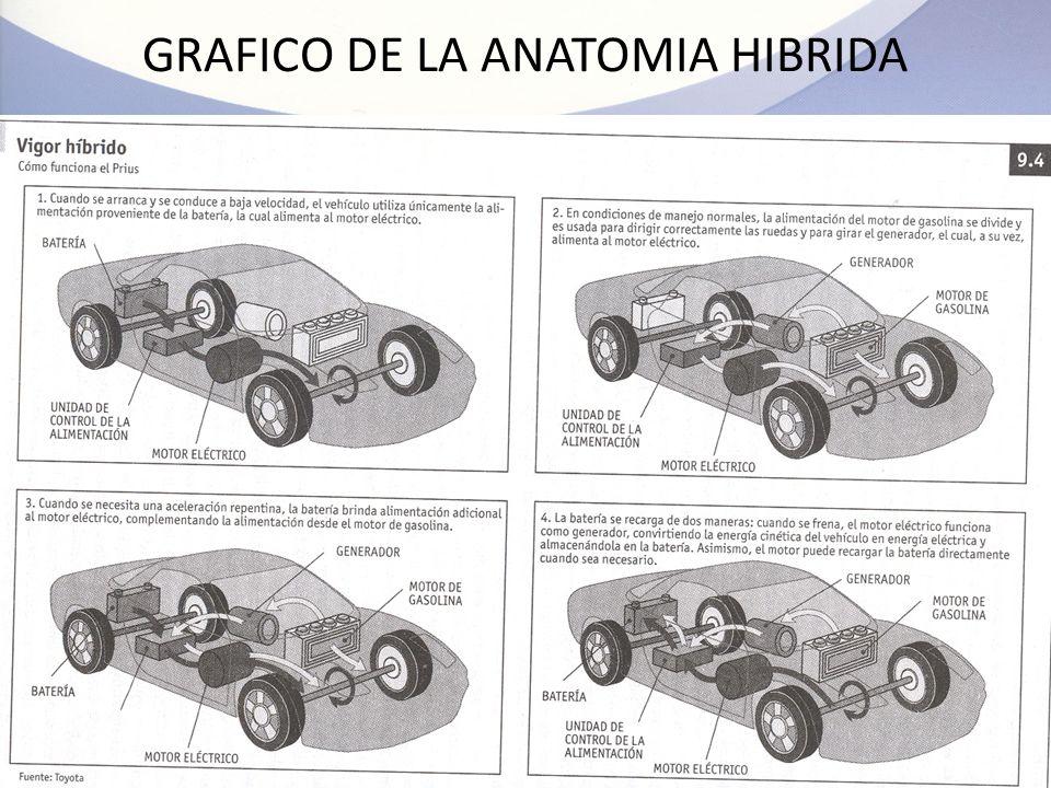 Fantástico Anatomía Motor De Un Coche Inspiración - Anatomía de Las ...
