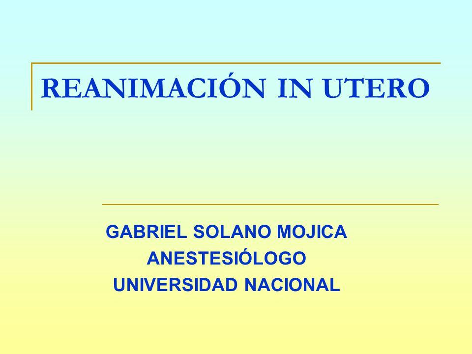 Moderno Universidad Anestesiólogo Friso - Anatomía de Las ...