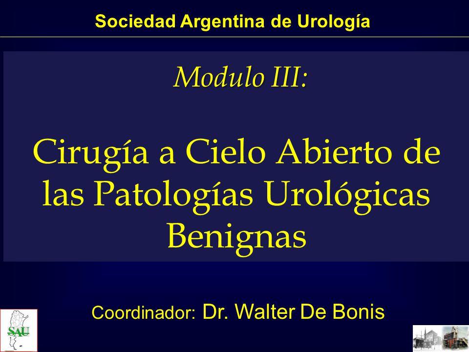 Sociedad Argentina de Urología
