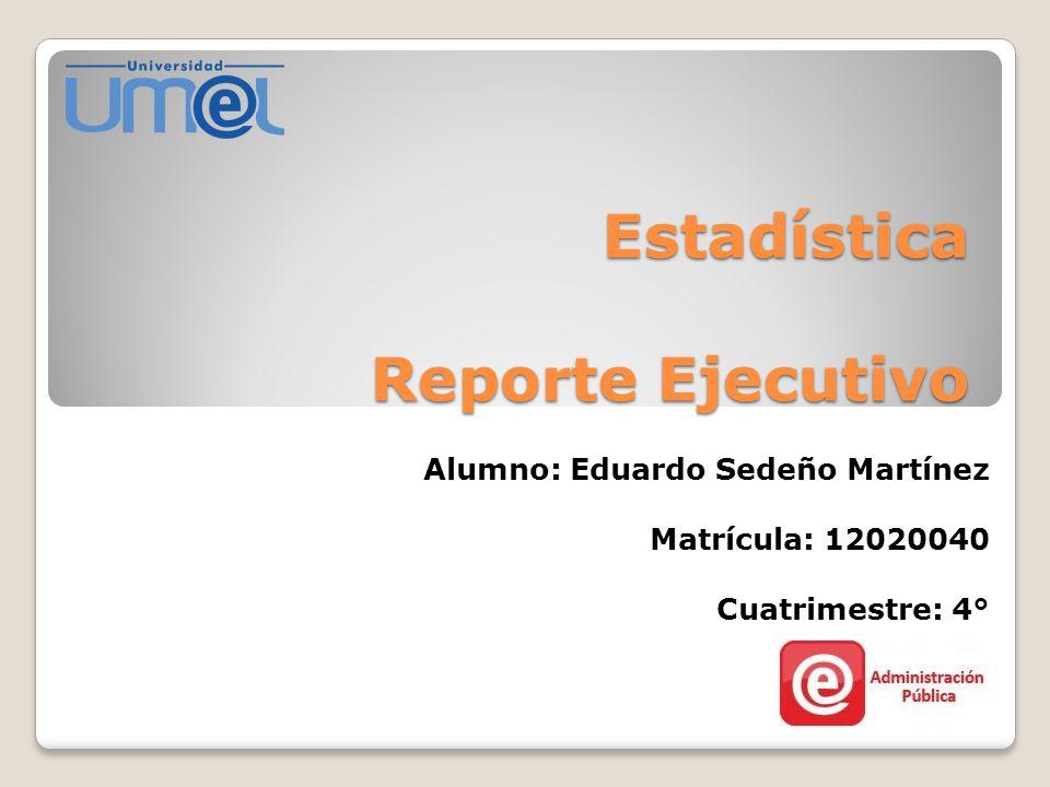 Estadística Reporte Ejecutivo
