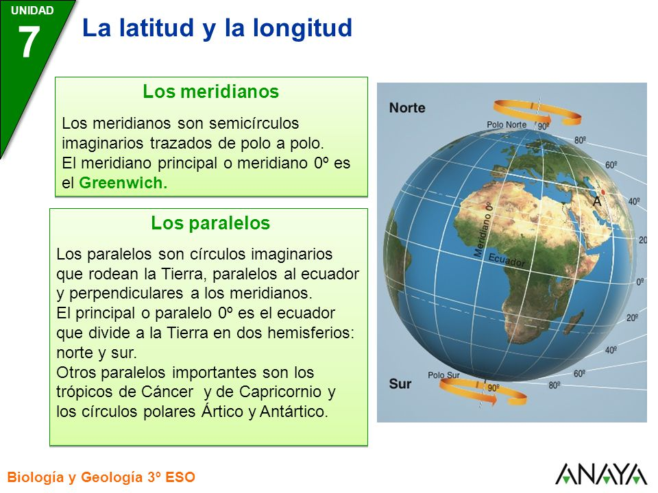 7 La latitud y la longitud Los meridianos Los paralelos