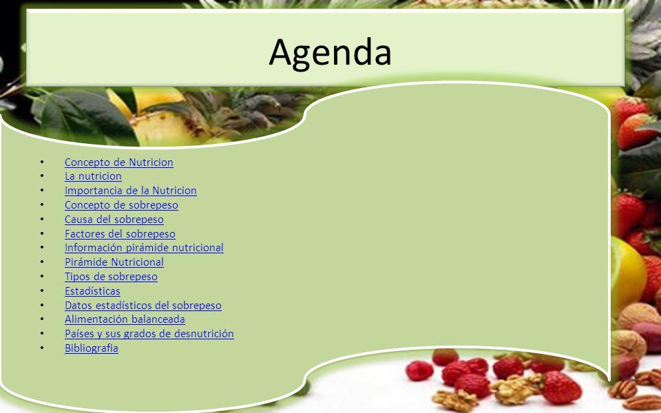 Agenda Concepto de Nutricion La nutricion Importancia de la Nutricion