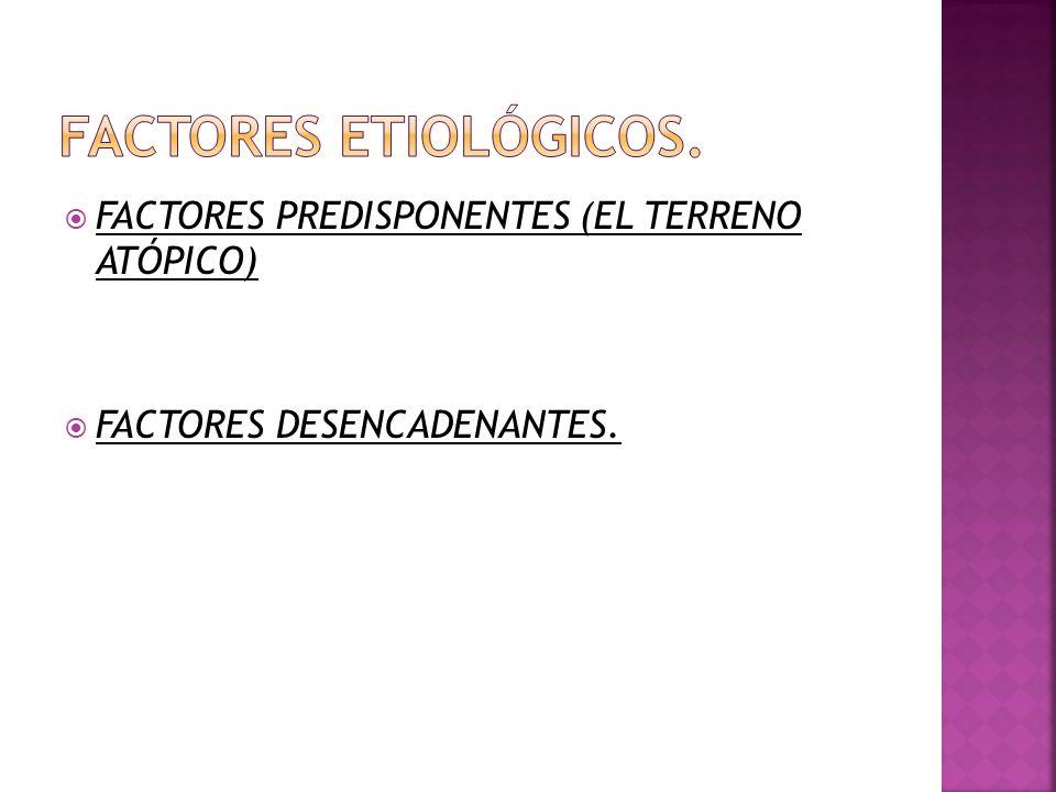 FACTORES ETIOLÓGICOS. FACTORES PREDISPONENTES (EL TERRENO ATÓPICO)