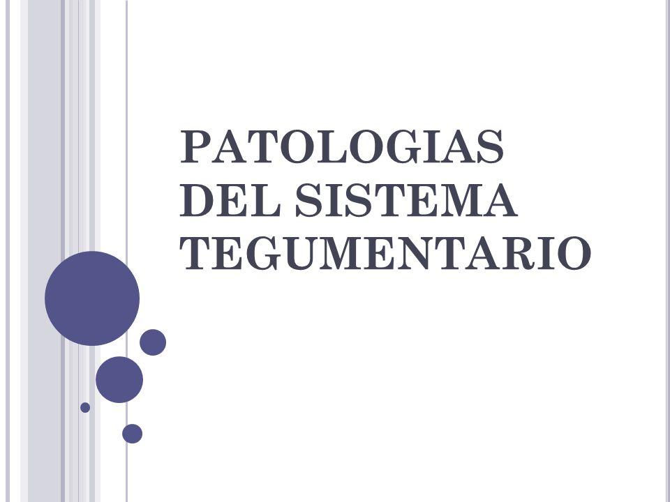 PATOLOGIAS DEL SISTEMA TEGUMENTARIO