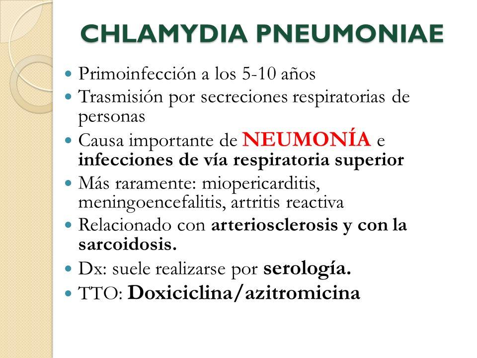 CHLAMYDIA PNEUMONIAE Primoinfección a los 5-10 años