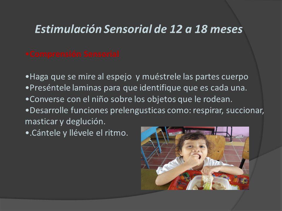 Desarrollo cerebral 0 6 a os ppt descargar - Cenas rapidas para ninos de 18 meses ...