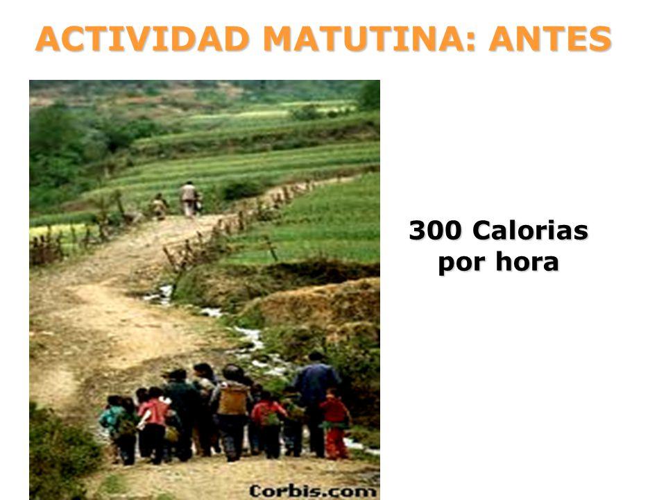 ACTIVIDAD MATUTINA: ANTES