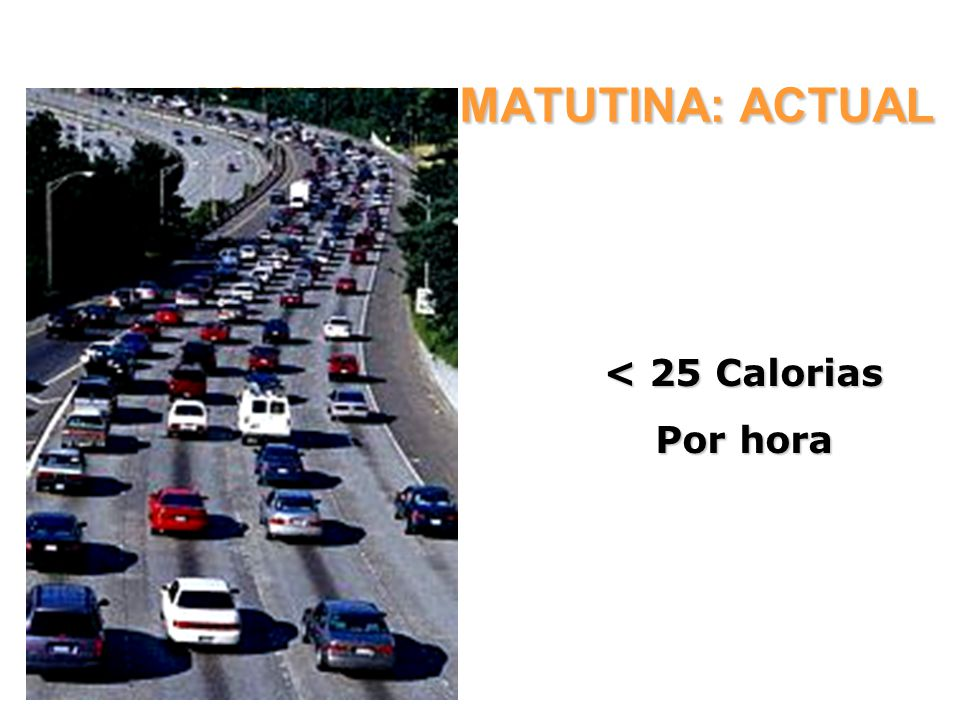 ACTIVIDAD MATUTINA: ACTUAL
