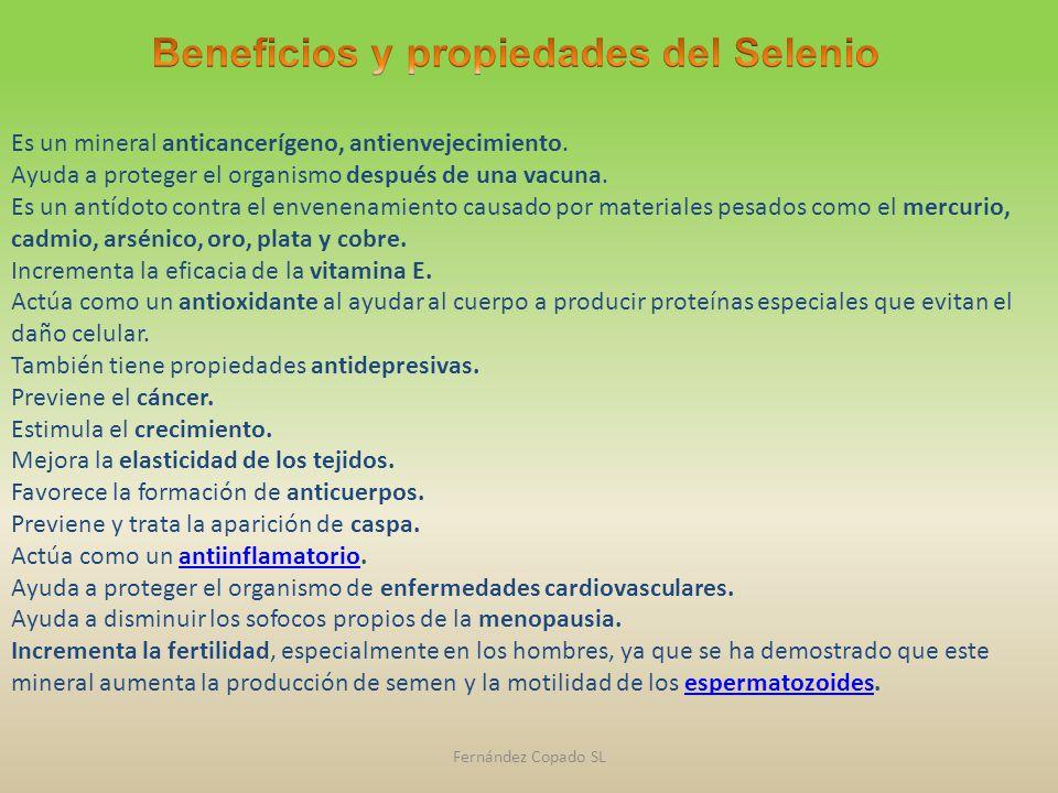Resultado de imagen de beneficios del selenio
