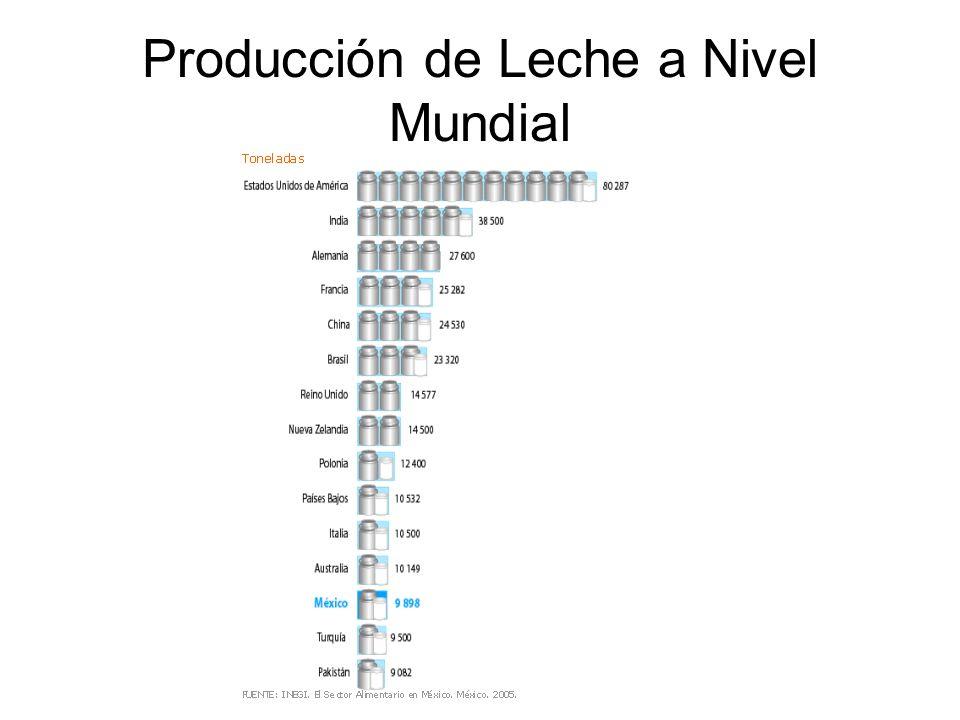 Producción de Leche a Nivel Mundial