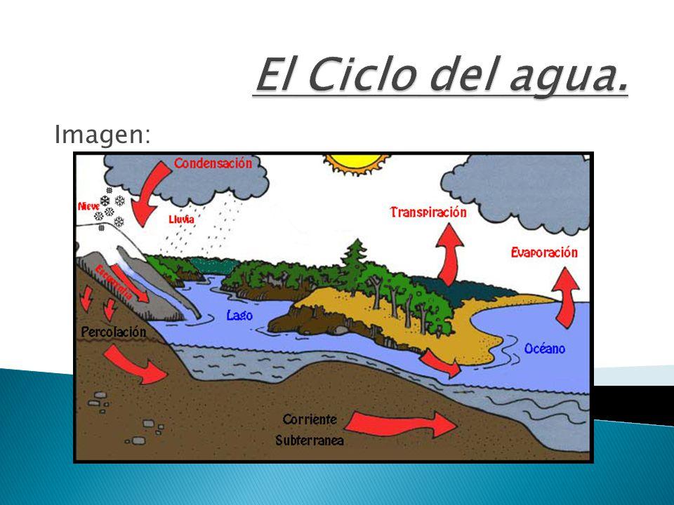 El Ciclo del agua. Imagen:
