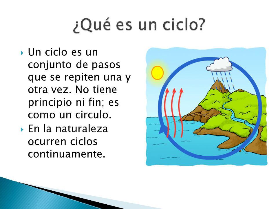 ¿Qué es un ciclo Un ciclo es un conjunto de pasos que se repiten una y otra vez. No tiene principio ni fin; es como un circulo.