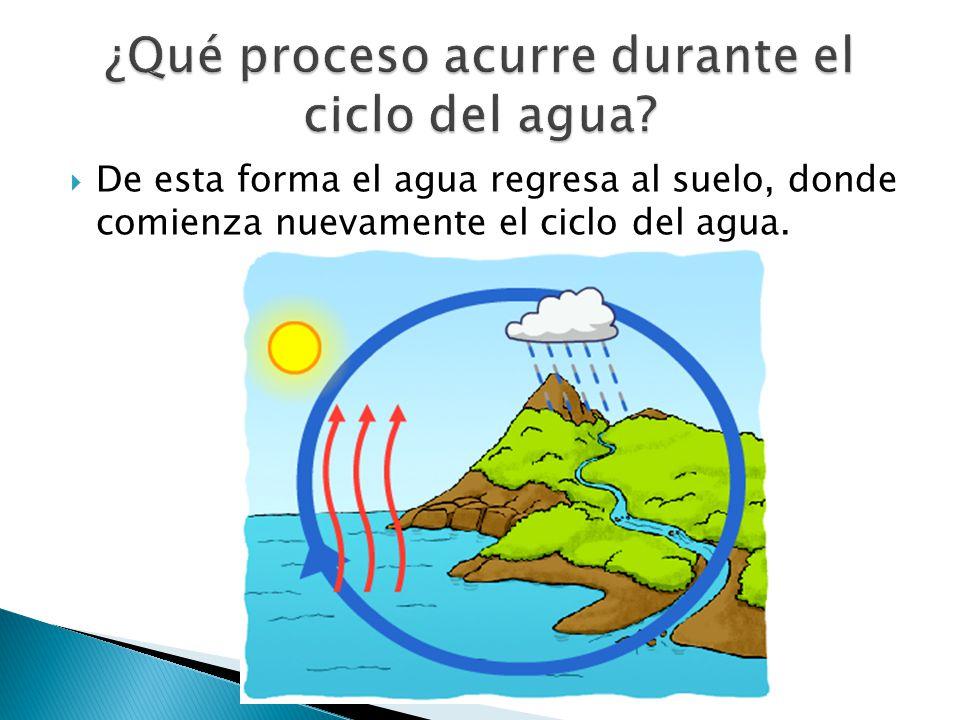 ¿Qué proceso acurre durante el ciclo del agua