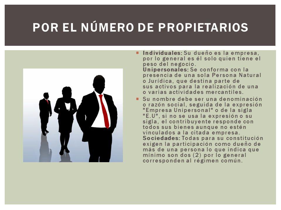POR EL NÚMERO DE PROPIETARIOS