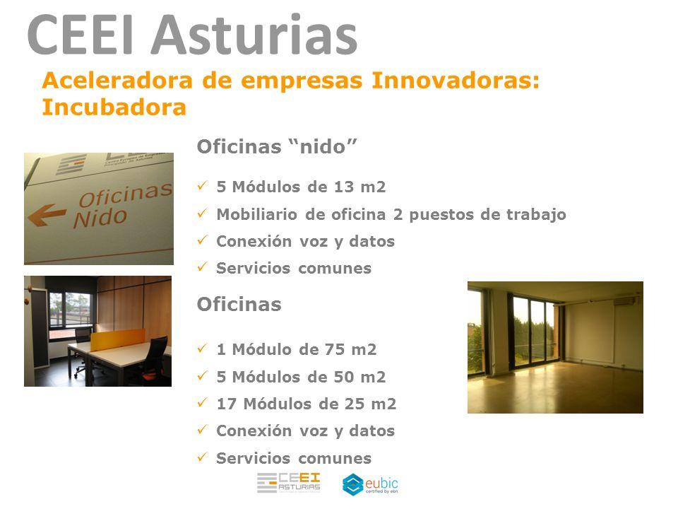 Eva pando iglesias ceei asturias ppt descargar for Mobiliario de oficina asturias