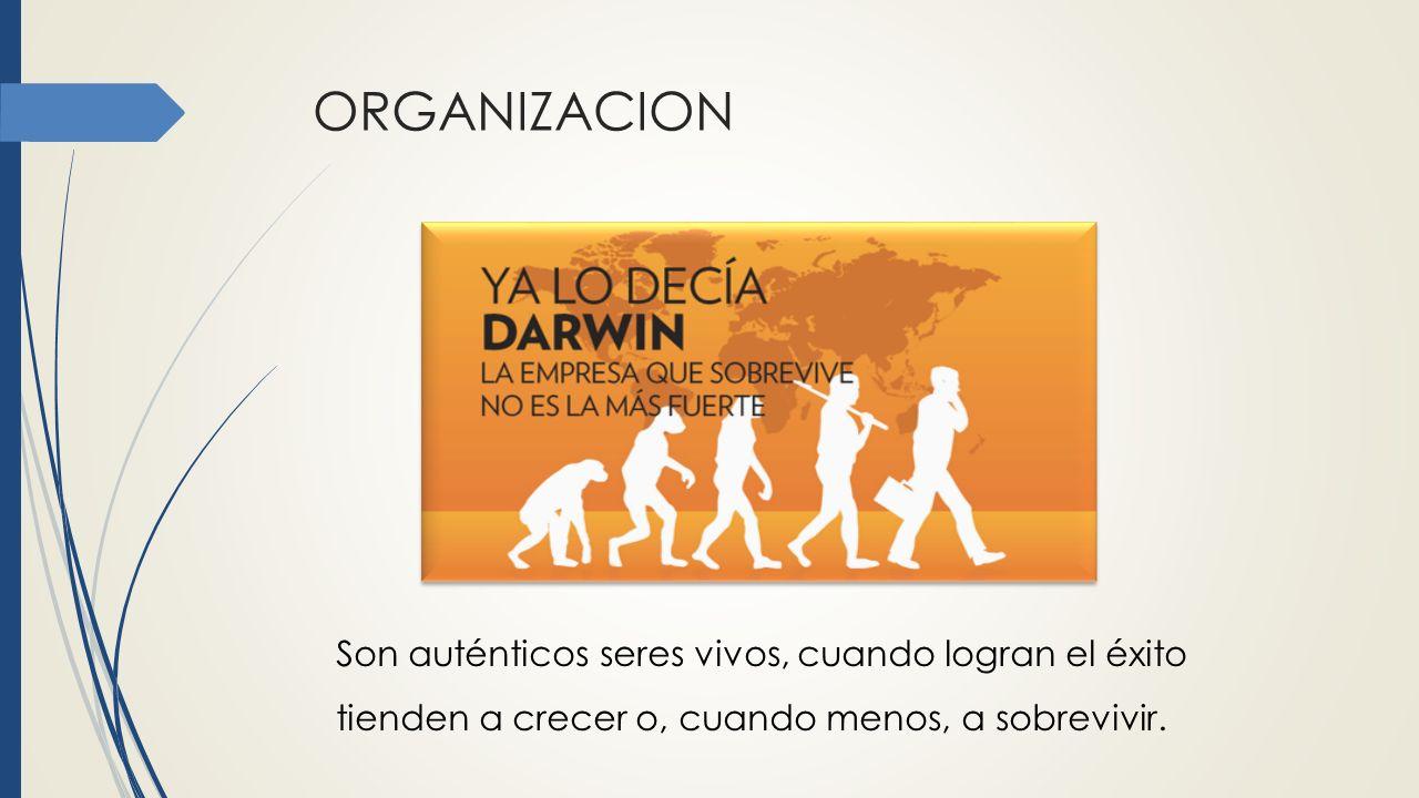 ORGANIZACION Son auténticos seres vivos, cuando logran el éxito tienden a crecer o, cuando menos, a sobrevivir.