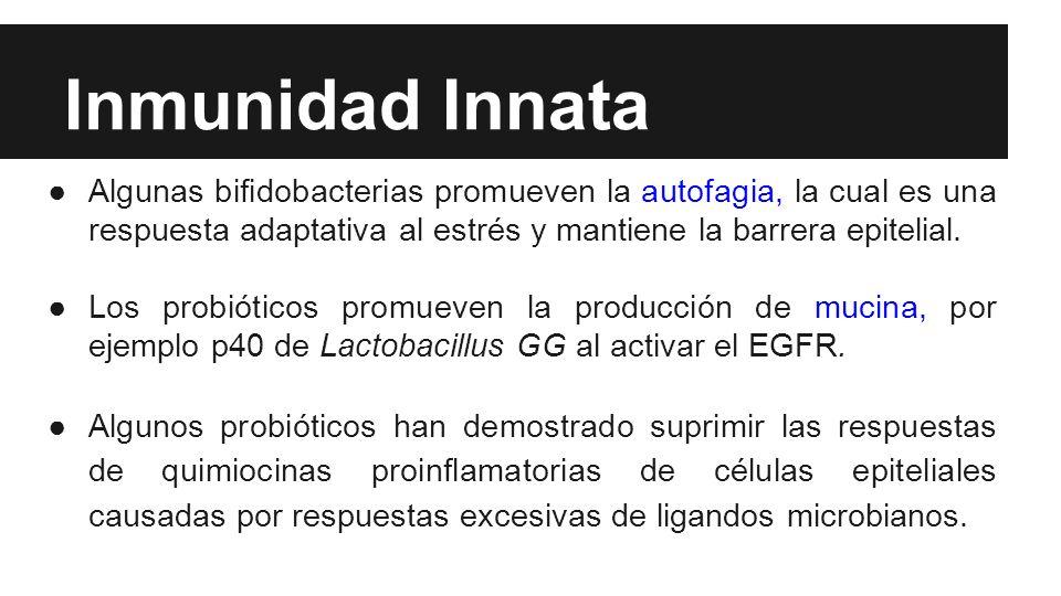 Inmunidad Innata Algunas bifidobacterias promueven la autofagia, la cual es una respuesta adaptativa al estrés y mantiene la barrera epitelial.