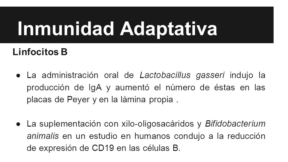 Inmunidad Adaptativa Linfocitos B