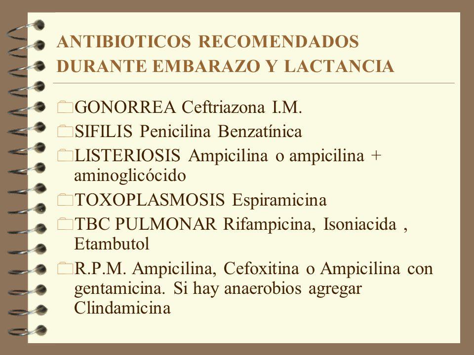 Eritromicina y lactancia