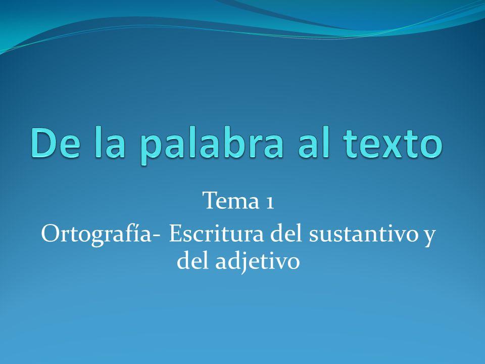 Tema 1 Ortografía- Escritura del sustantivo y del adjetivo