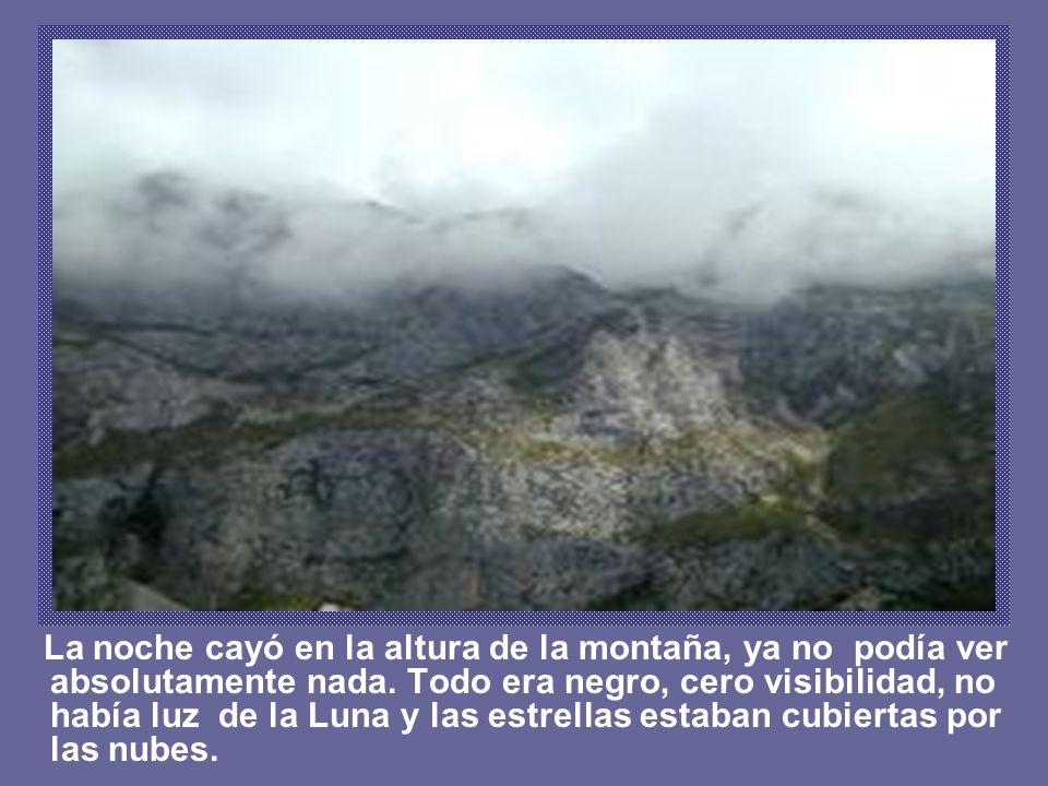 La noche cayó en la altura de la montaña, ya no podía ver absolutamente nada.