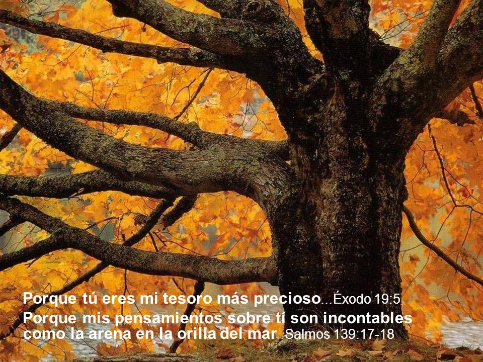Porque tú eres mi tesoro más precioso...Éxodo 19:5