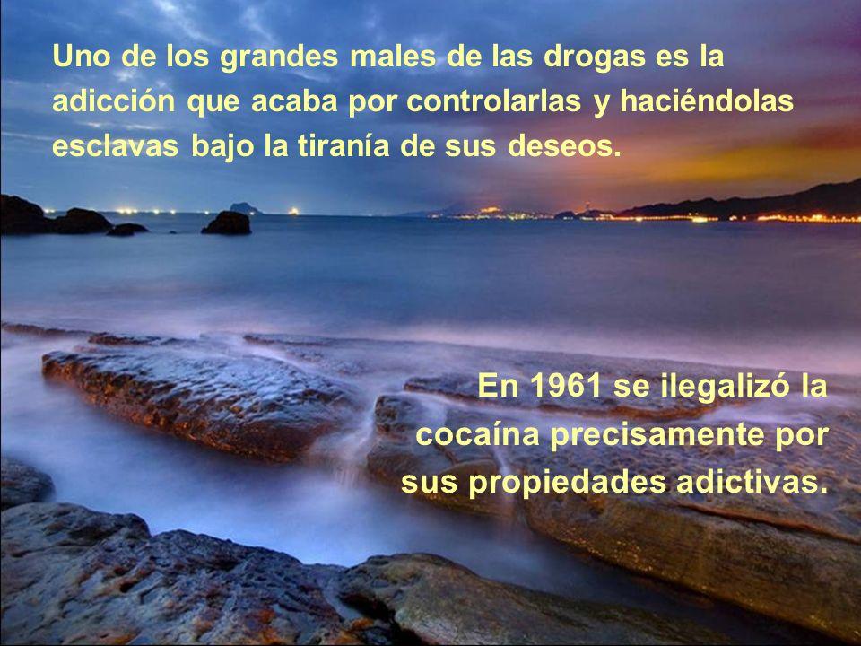 cocaína precisamente por sus propiedades adictivas.
