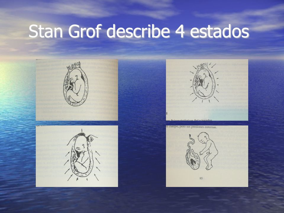 Stan Grof describe 4 estados