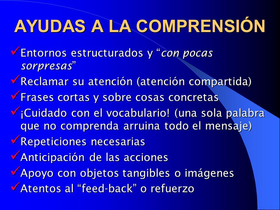 AYUDAS A LA COMPRENSIÓN