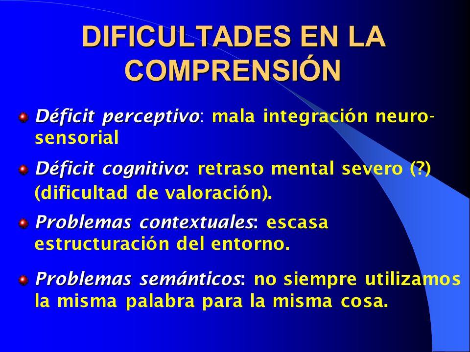 DIFICULTADES EN LA COMPRENSIÓN